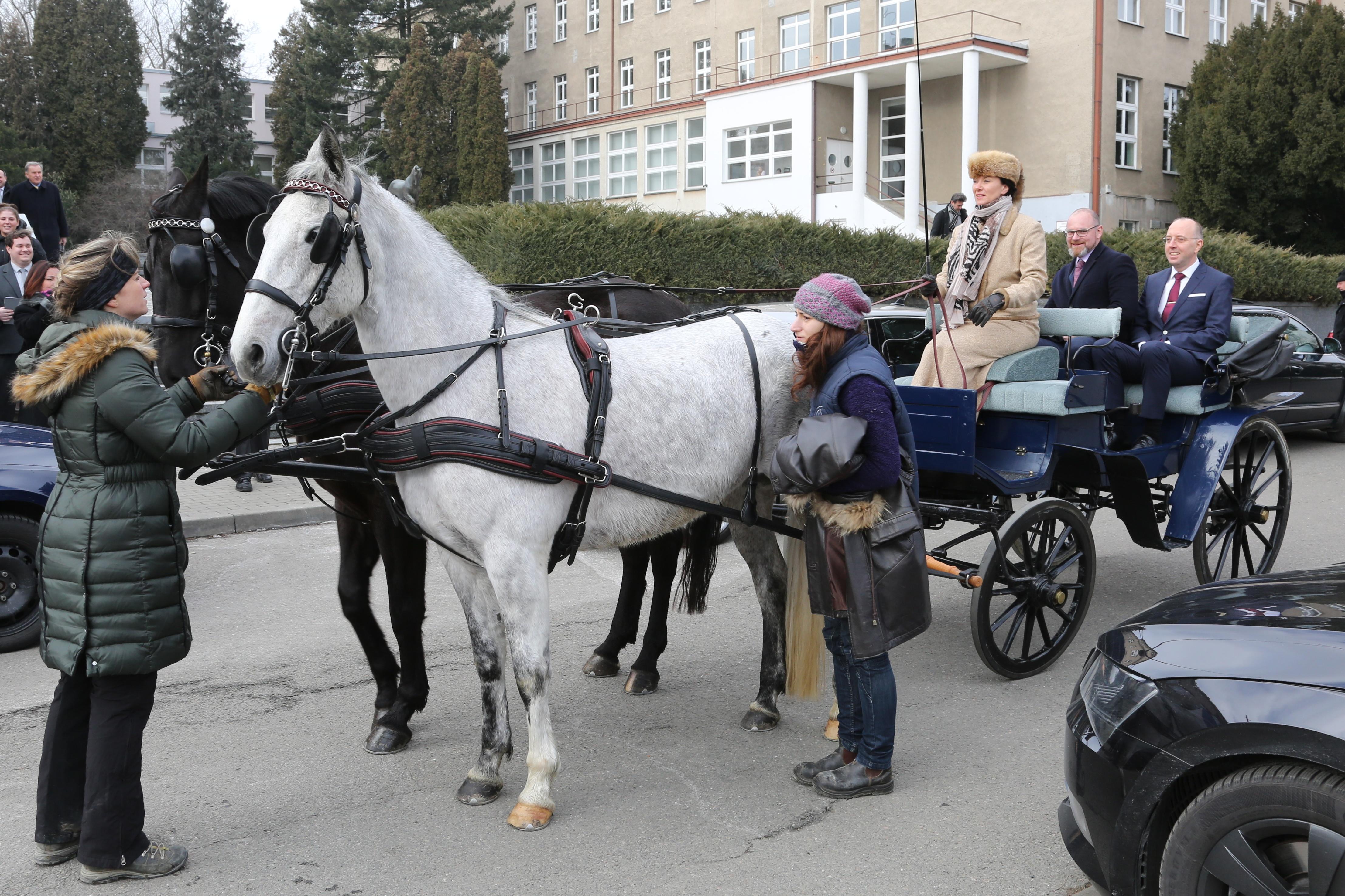 Po významném obřadu nechyběla slavnostní projížďka v kočáře. Rektor Alois Nečas a ministr školství, mládeže a tělovýchovy Robert Plaga.